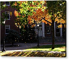 Lafayette College Easton Pa In Autumn Acrylic Print by Jacqueline M Lewis