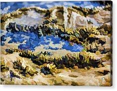 Laguna Beach Tide Pool Pattern 3 Acrylic Print by Scott Campbell