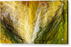 Lair Dynamics Acrylic Print