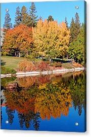 Lake At Davis Acrylic Print by Jim Halas