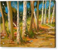 Lake Champlain Woods Acrylic Print by Valerie Lynch