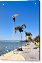 Acrylic Print featuring the photograph Lake Chapala - Mexico by David Perry Lawrence