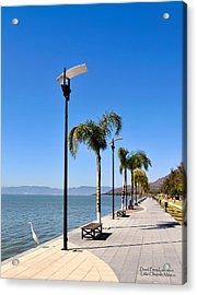 Lake Chapala - Mexico Acrylic Print by David Perry Lawrence