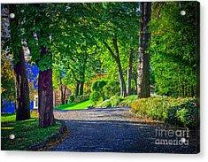 Lake Como Path Acrylic Print