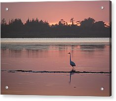 Lake Earl Sunset  Acrylic Print by Gracia  Molloy