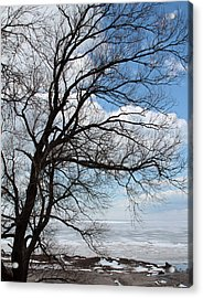 Acrylic Print featuring the photograph Lake Erie In March by John Freidenberg