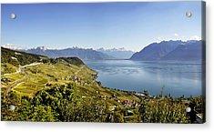 Lake Geneva Vineyards Acrylic Print