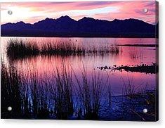 Lake Havasu Sunset Acrylic Print by Eric Foltz
