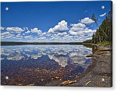 Lake Lewis Reflections Acrylic Print