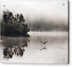 Lake Logan Fog And Heron - Flight Acrylic Print