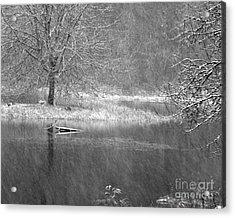 Lake Lois Acrylic Print by Chuck Flewelling