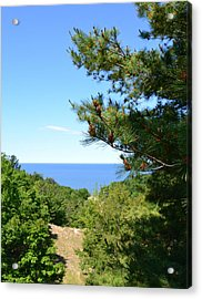 Lake Michigan From The Top Of The Dune Acrylic Print by Michelle Calkins