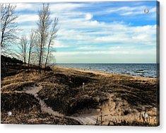 Acrylic Print featuring the photograph Lake Michigan Shoreline by Lauren Radke