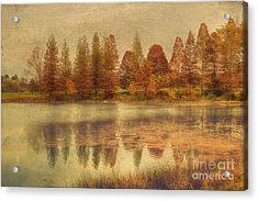 Lake Nevin Acrylic Print by Darren Fisher
