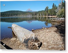 Acrylic Print featuring the photograph Lake Of The Woods 3 by Debra Thompson