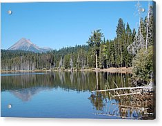 Acrylic Print featuring the photograph Lake Of The Woods 4 by Debra Thompson