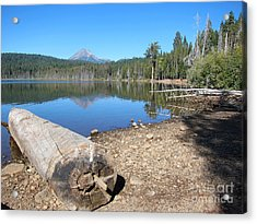 Acrylic Print featuring the photograph Lake Of The Woods 5 by Debra Thompson