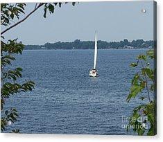 Lake Ontario Sailing Acrylic Print by Kevin Croitz