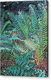 Lake Padden Series - Wendel Holboy Bench Acrylic Print
