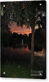 Lake Play Florida Acrylic Print