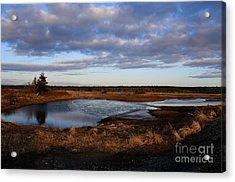 Lake Reflection Acrylic Print by Sandy MacNeil