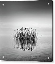 Lake Reflections Acrylic Print by George Digalakis