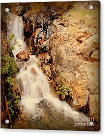 Lake Shasta Waterfall 2 Acrylic Print by Garnett  Jaeger