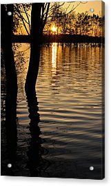 Acrylic Print featuring the photograph Lake Silhouettes by Julie Andel