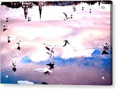 Lake Sonata Acrylic Print