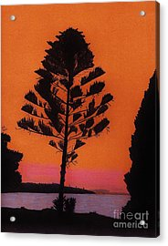 Acrylic Print featuring the drawing Lake Sunset by D Hackett