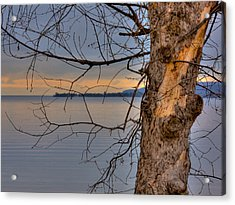 Lake Superior Acrylic Print by Larry Capra