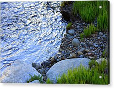 Lake Tahoe River's Edge Acrylic Print by Anne Barkley