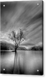 Lake Tree Mon Acrylic Print