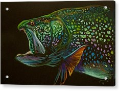 Lake Trout Portrait Acrylic Print by Yusniel Santos