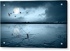 Lake Under The Moon Acrylic Print by Gianfranco Weiss