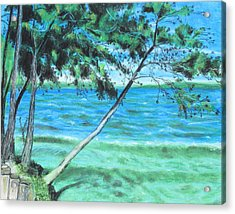 Lakeland 3 Acrylic Print