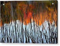 Lakeside Tales Acrylic Print