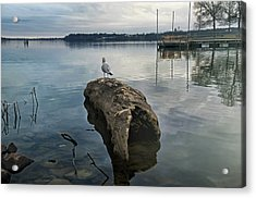 Lakeside Acrylic Print by Steven  Michael