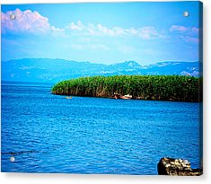 Acrylic Print featuring the photograph Lakeview by Zafer Gurel