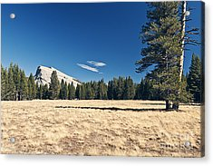 Lambert Dome In Yosemite National Park Acrylic Print by Justin Paget