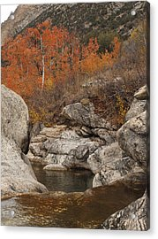 Lamoille Canyon Colors Acrylic Print