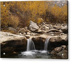 Acrylic Print featuring the photograph Lamoille Creek by Jenessa Rahn