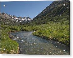 Lamoille Creek Acrylic Print
