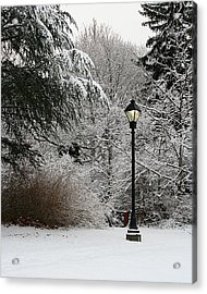 Lamp Post In Winter Acrylic Print