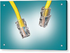 Lan Cable Close Up Acrylic Print by Shaun Wilkinson