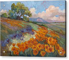 Land Of Sunshine Acrylic Print by Diane McClary