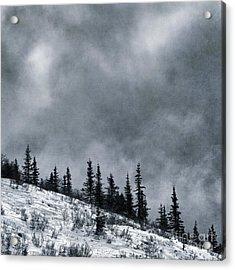 Land Shapes 1 Acrylic Print by Priska Wettstein
