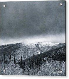 Land Shapes 3 Acrylic Print by Priska Wettstein
