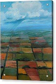 Land Use Acrylic Print