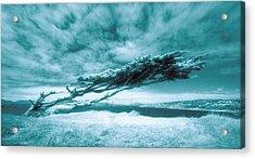 Lands End Acrylic Print by Daniel Furon